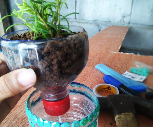 Upcycled Plastic Bottle Into Self Watering Planter!!!