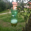 How to make a bug trap (mosquitos,wasps,hornets...)