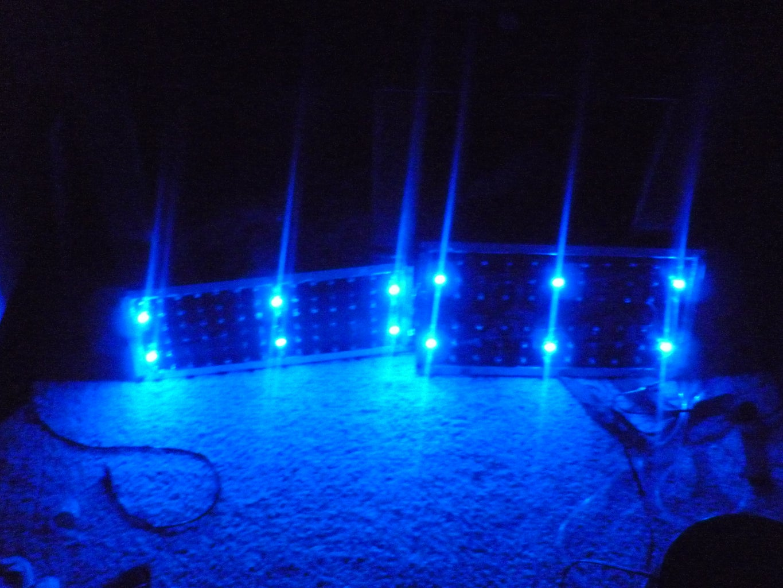 LED Aquarium Light With Moonlight