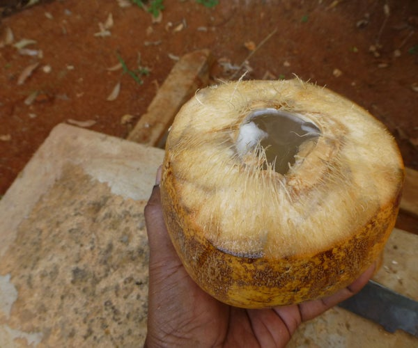How to Cut Open a Tender Coconut