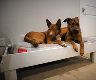 Making a Dog Bed Out of an OLD Couch - Upcycle