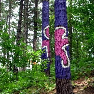 bosque-de-oma-findechic.jpg