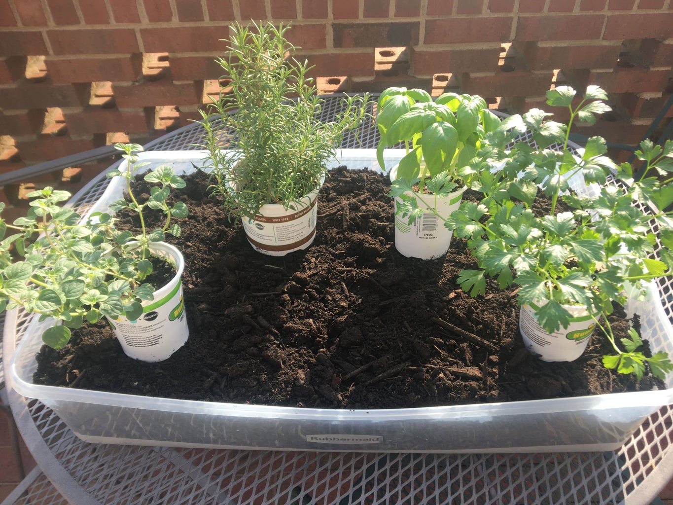 Select and Add Plants (and Soil)