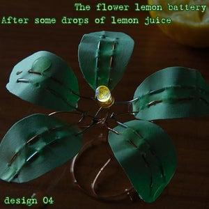 The Flower Lemon Battery