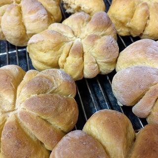Butternut Pumpkin Bread Rolls (Squash)