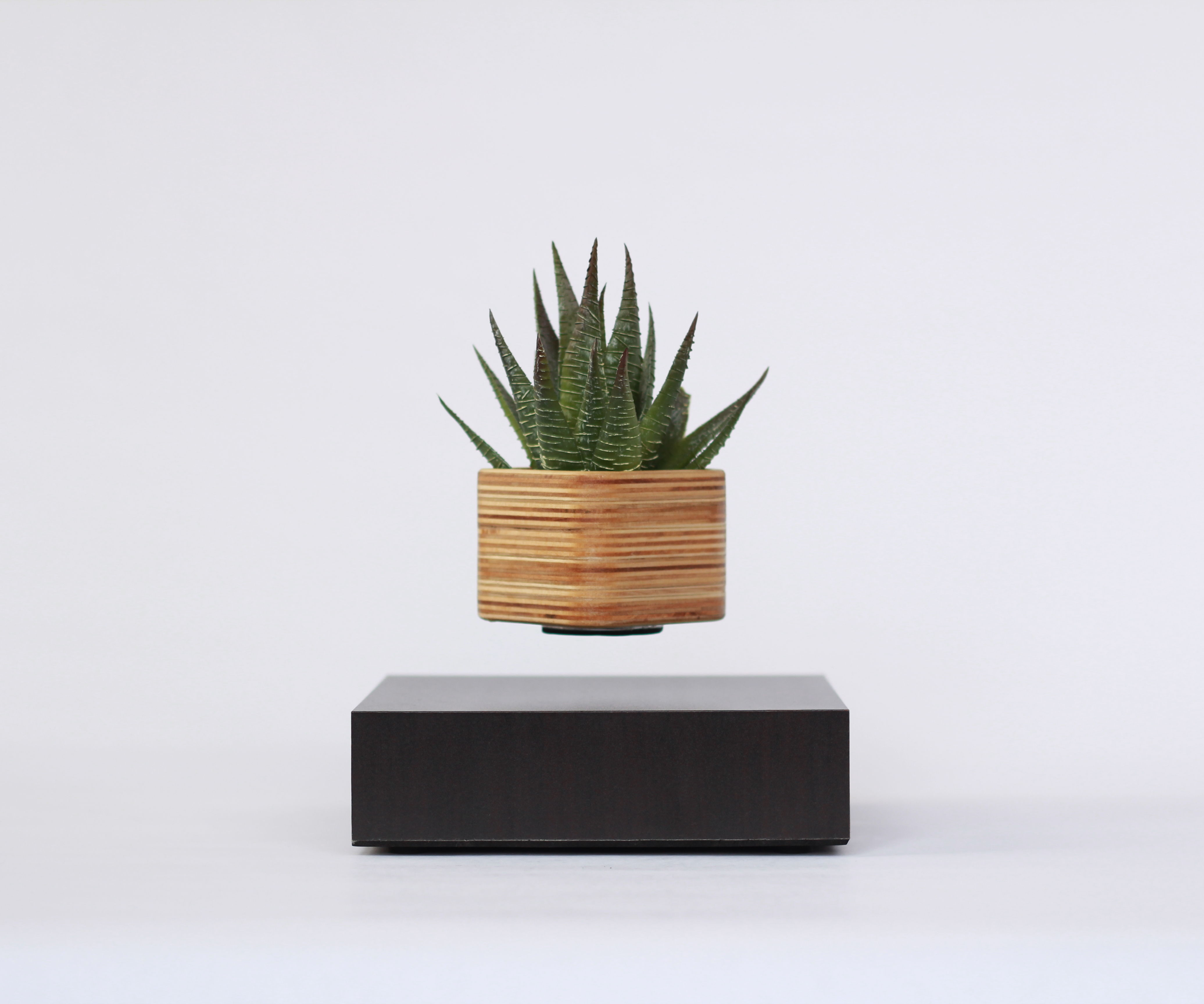 Building a Wood Planter for LEVdisplay