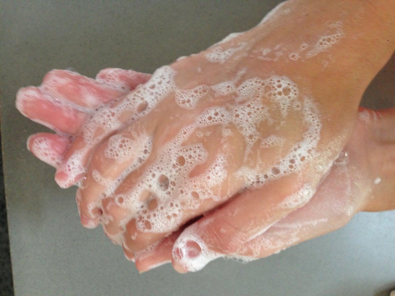 3 INGREDIENT COPY CAT LUSH FUN (HAND SOAP)