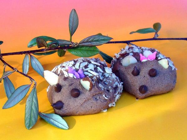 Amazing Chocolate Hedgehog Cookies