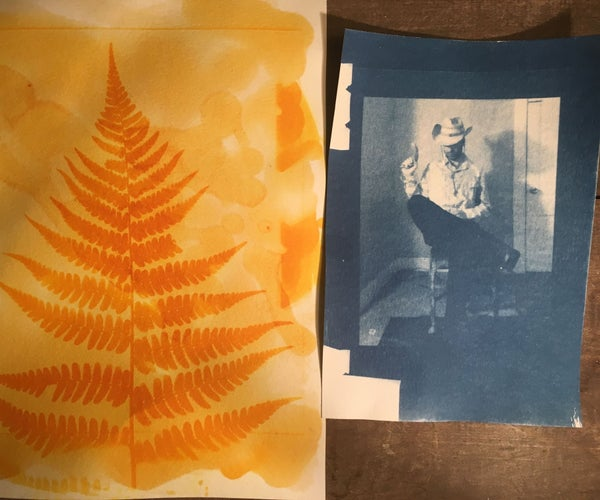 Alternative Photography: Anthotype & Cyanotype