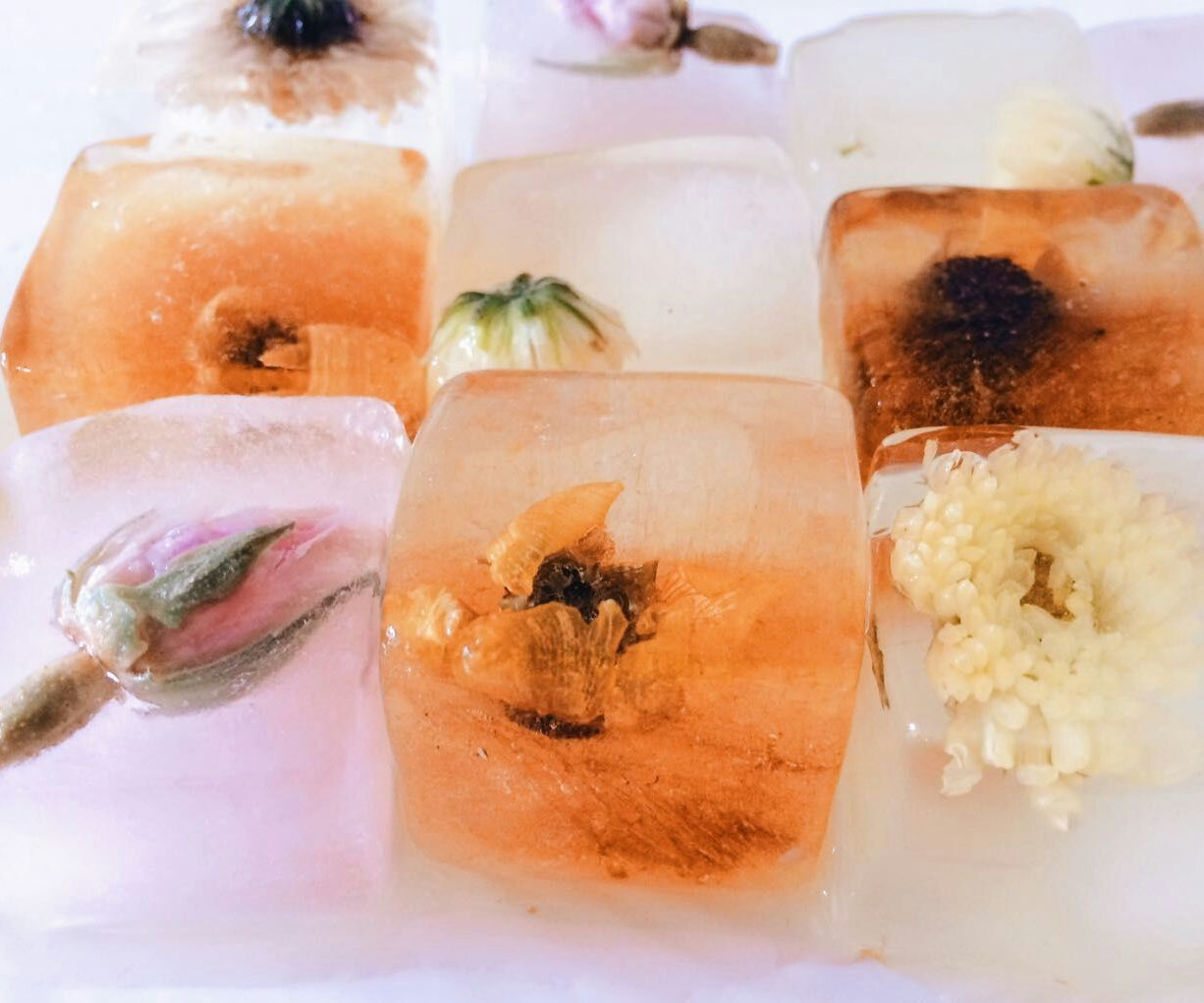 Herbal Tea Ice Cubes (T-Cubes)