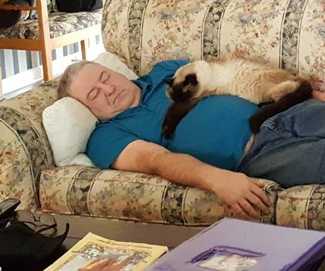 Relax With a Cat.
