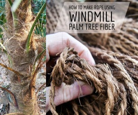 How to Make Rope Using Windmill Palm Tree Fiber!