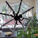 Spider Web With a Suction Cup