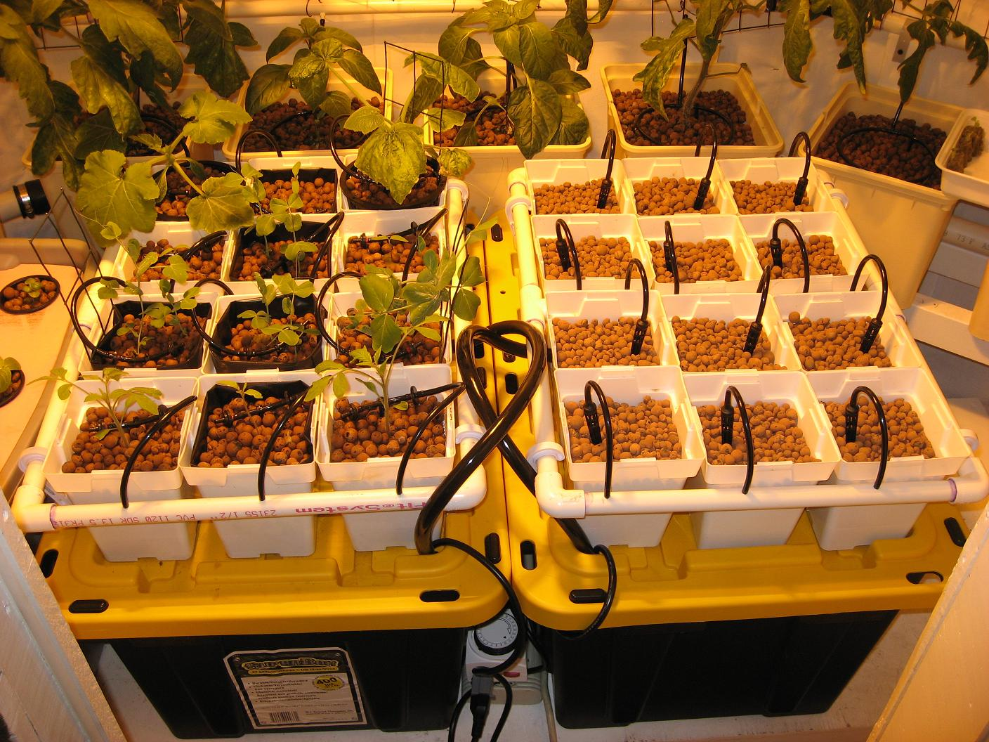 Hydroponic Drip Garden for Vegetables, Herbs or Flowers