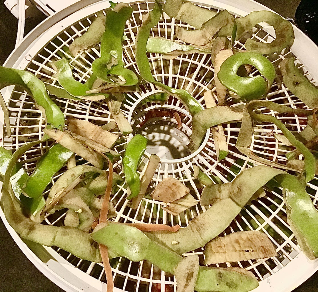 Drying Your Fruit and Vegetables