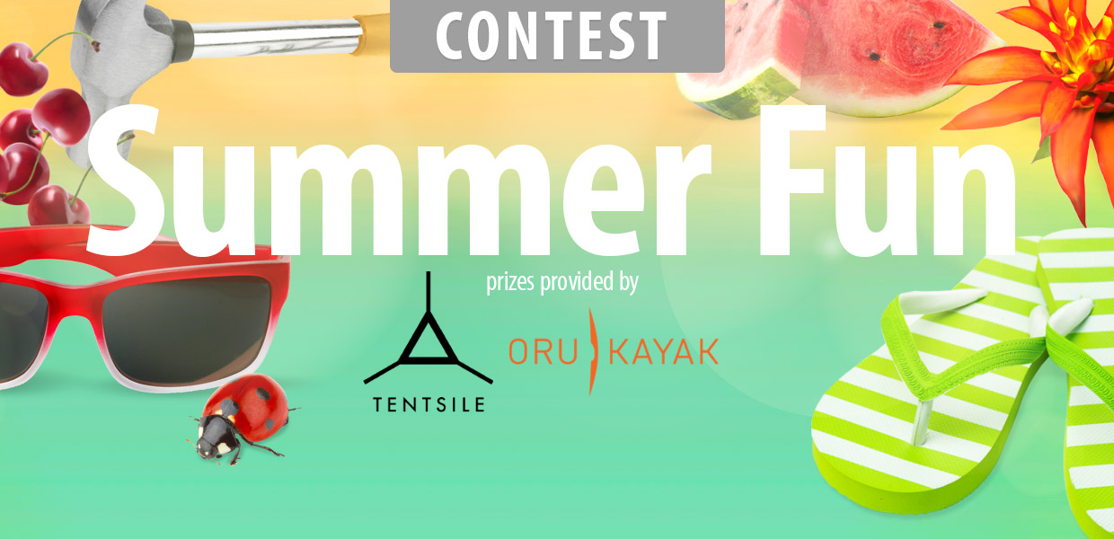 Summer Fun Contest 2016