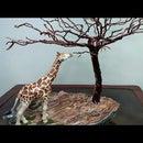 How to Make a Giraffe Diorama| Wire Tree