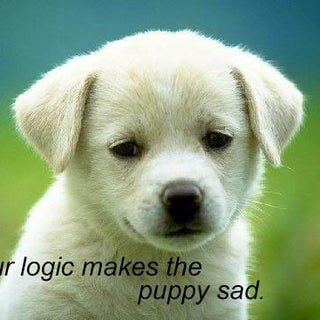 your-logic-makes-the-puppy-sad.jpg
