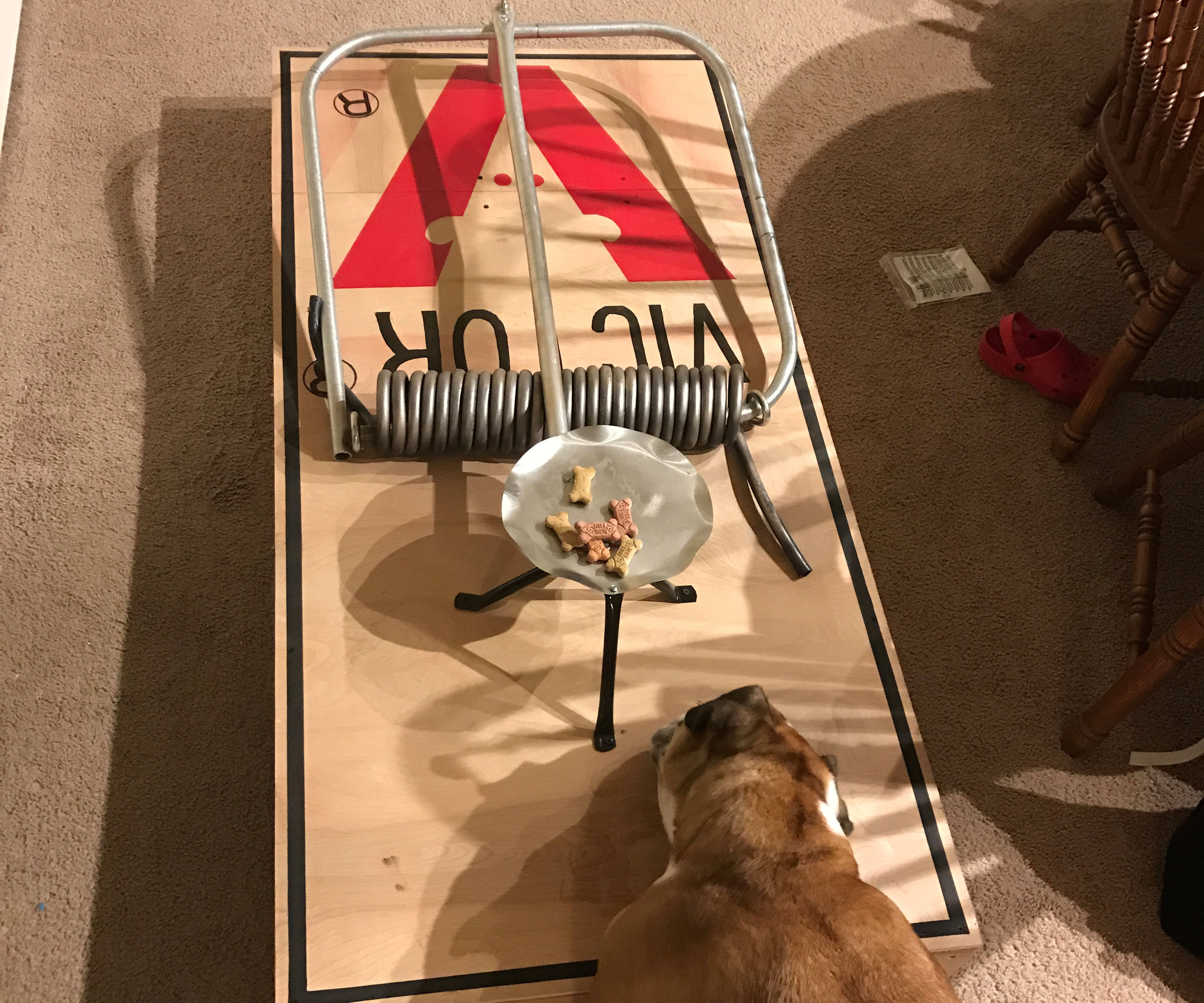 Giant Mousetrap