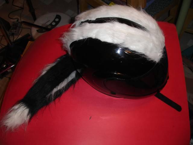 Skunkhelm! Skunk Striped Motorcycle Helmet