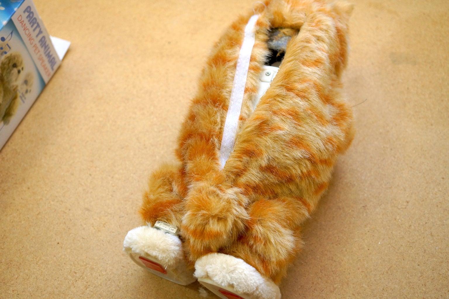 Strip the Cat