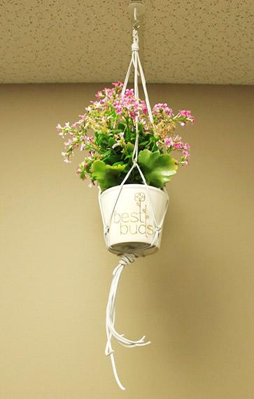 DIY suede macrame plant holder