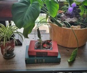Book Terrarium Planter