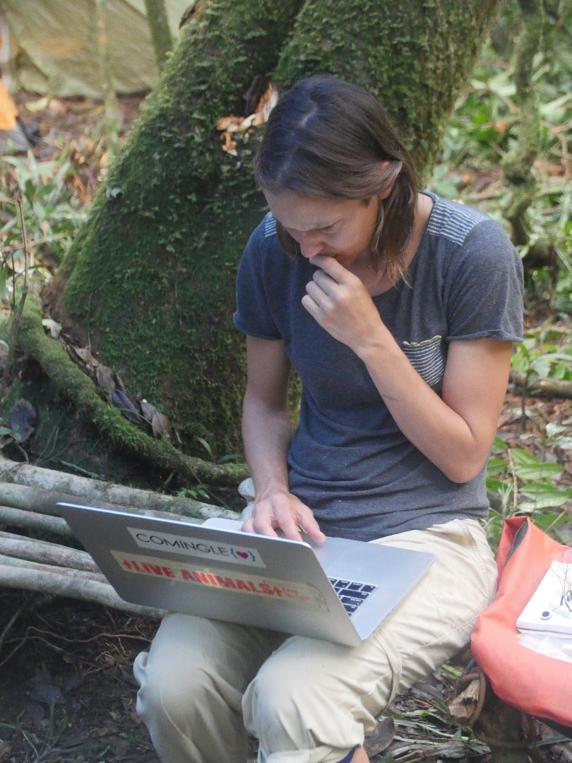 Programming in the Wild