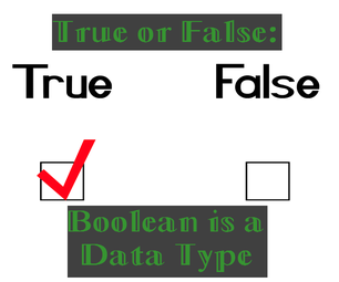 True or False: Boolean Is a Data Type