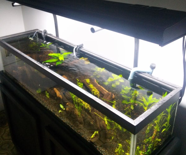 DIY High End Planted Tank #Balleronabudget