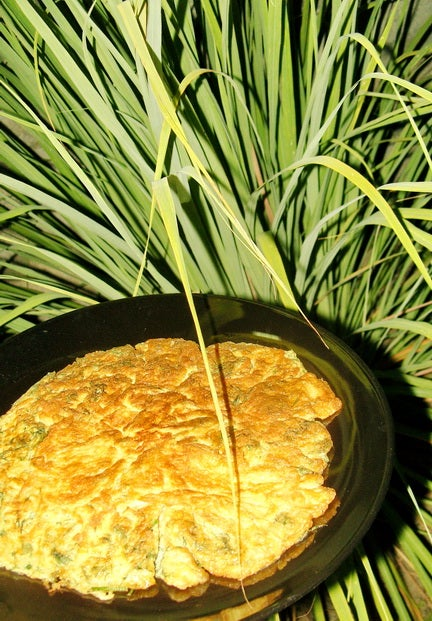 Thai Fried Omelette With Dill