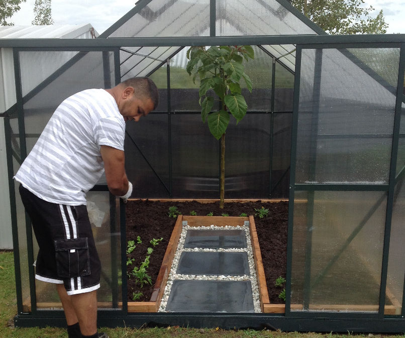 Inground Greenhouse Growing (including Recipes)