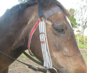 Make a Horse Bridle From Old Belts.