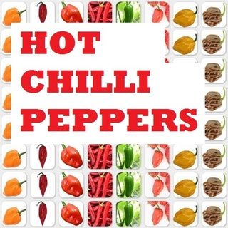 How to Start Chilli Seeds