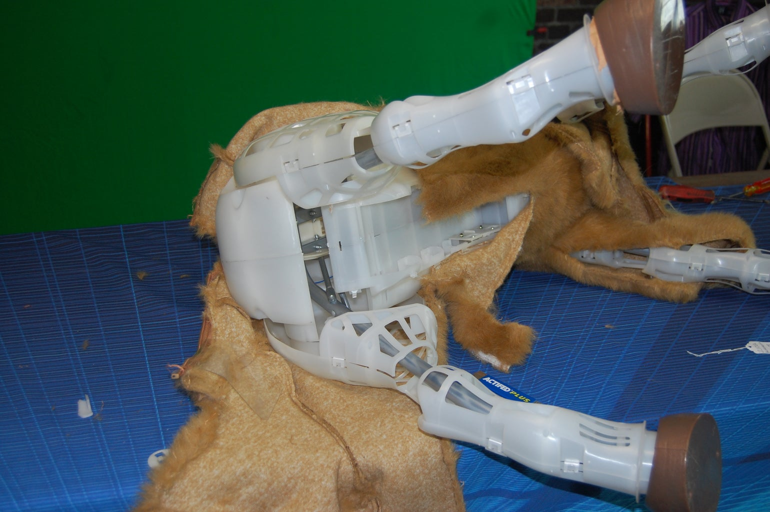 Removing the Skin: the Legs