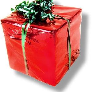 Christmas present 23.jpg