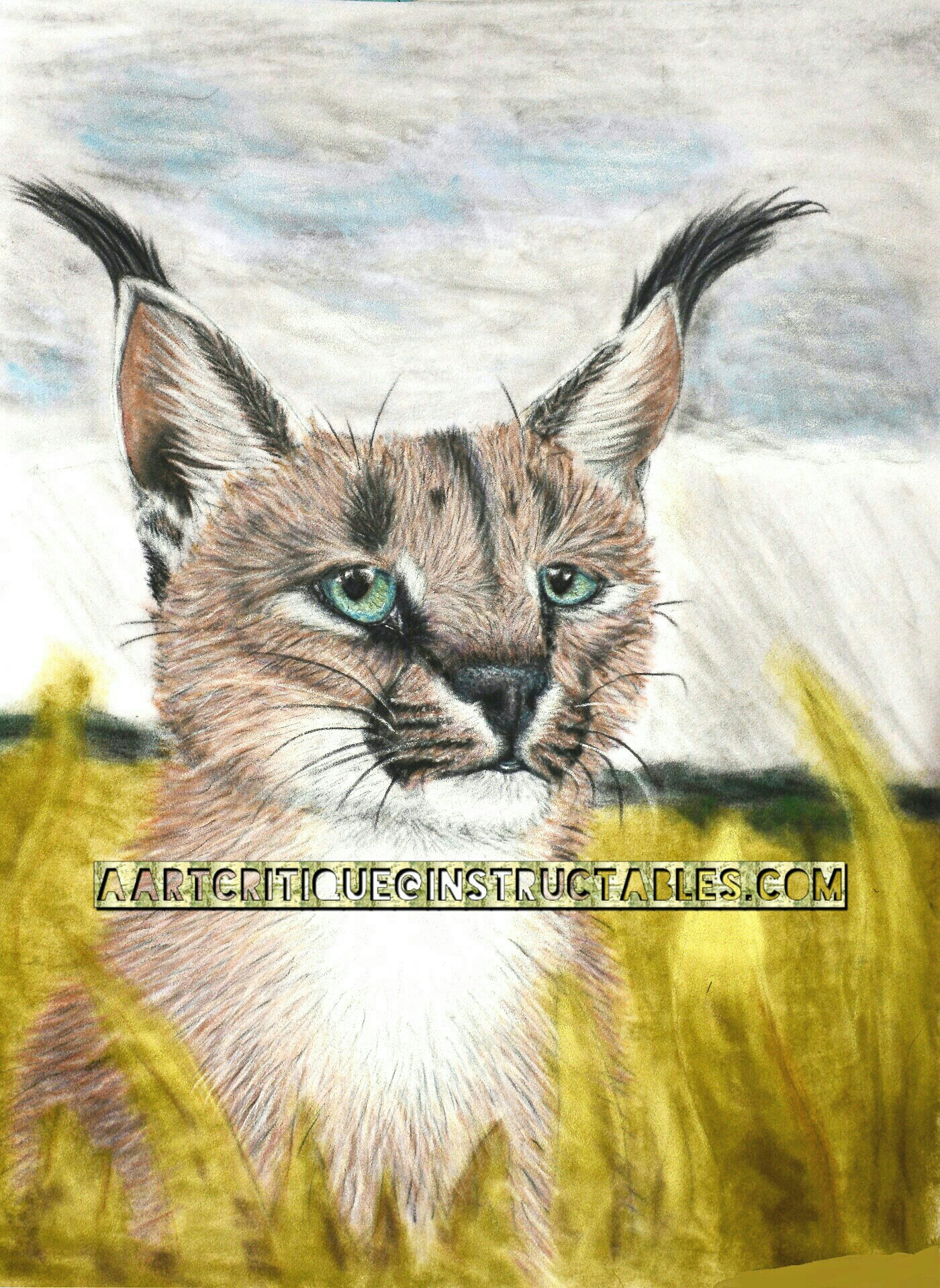 """DIY step-by-step """"Rainy Season"""" Caracal painting with chalk pastels and velour paper"""