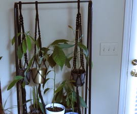 Tiered Plant Stand for a Narrow Space