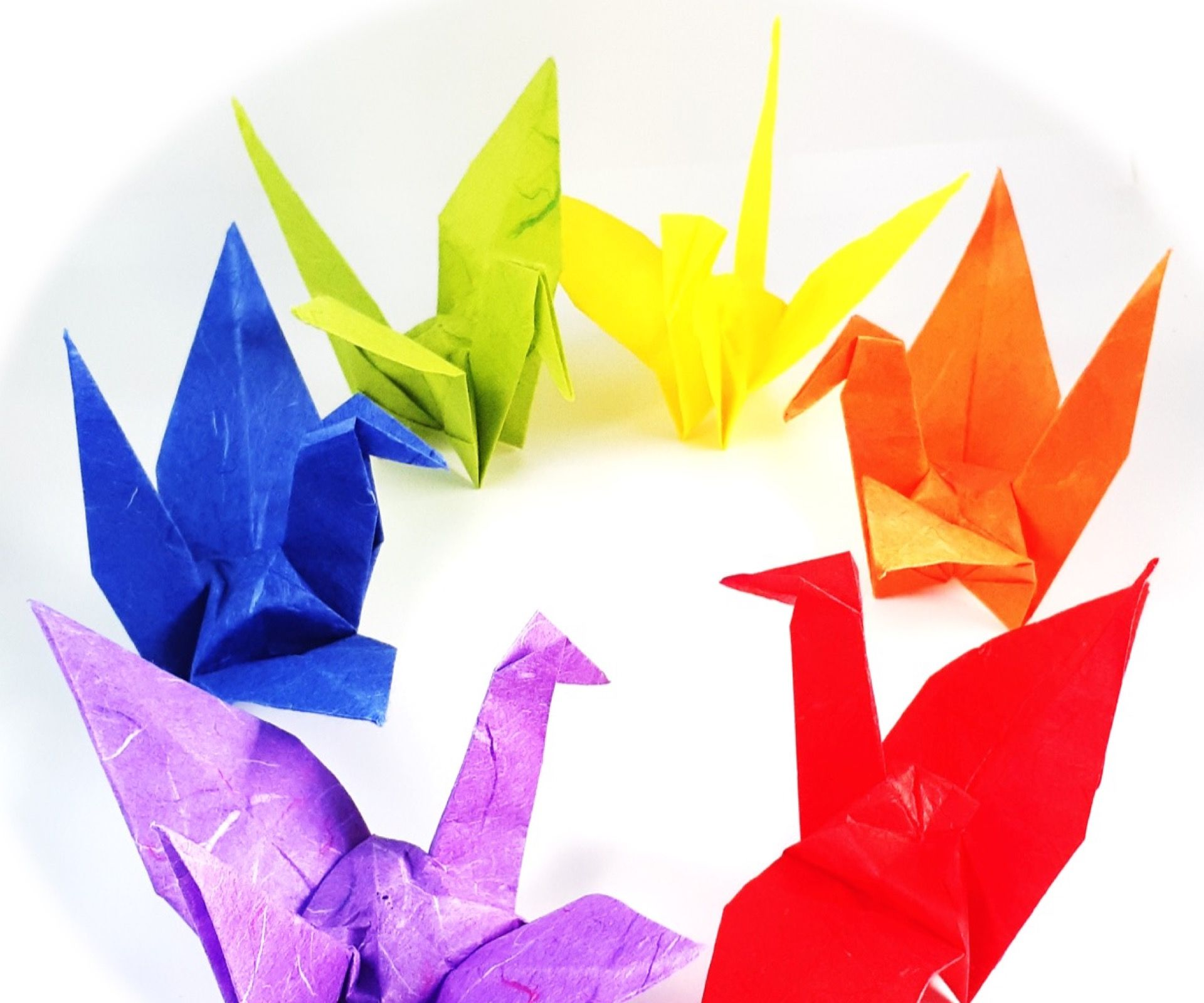 How to Make a Paper Bird / Origami Crane for Kids