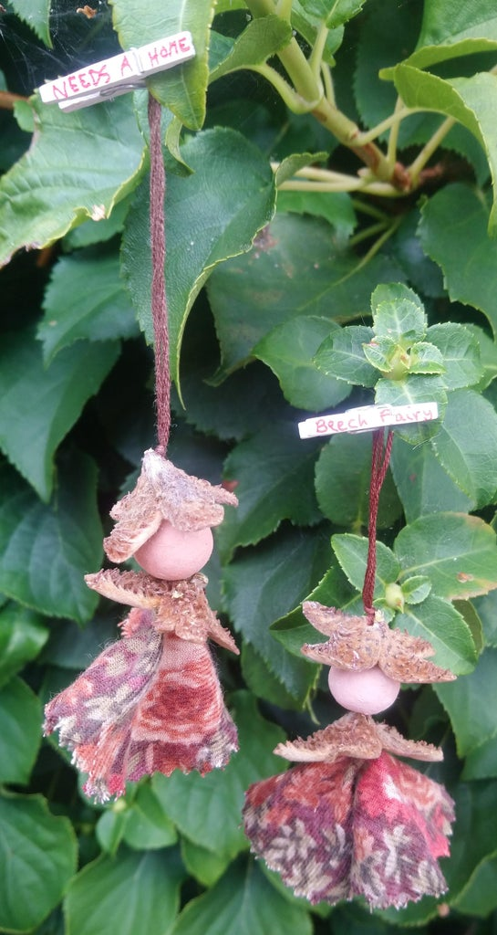 Beech Mast Fairy