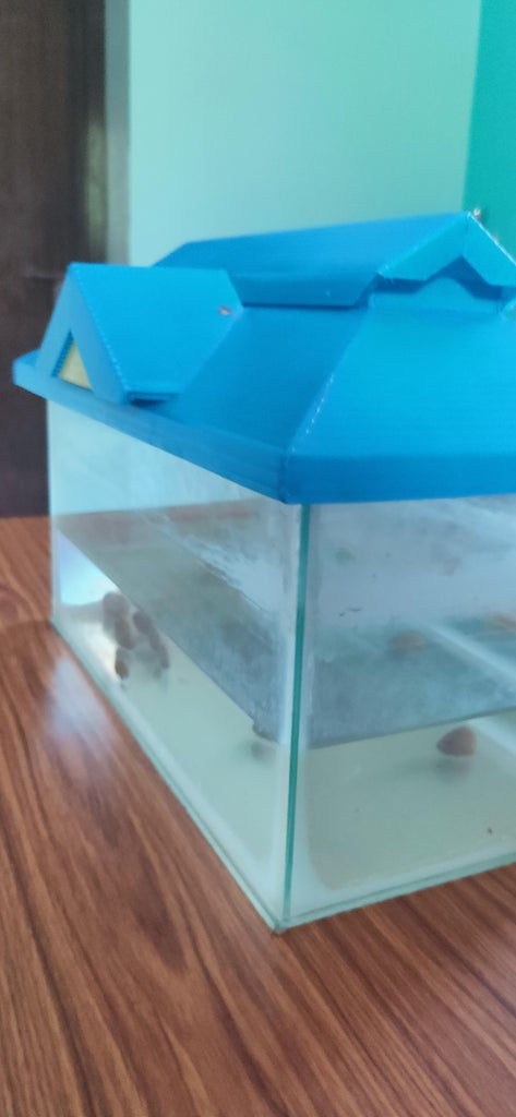 Home Made Aquarium With Glass