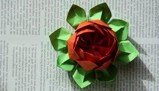 Origami Lotus Flower (Valentine's Day)