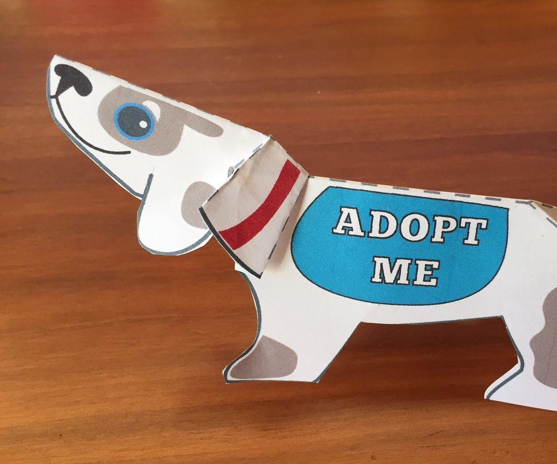 Adopt-a-Bot