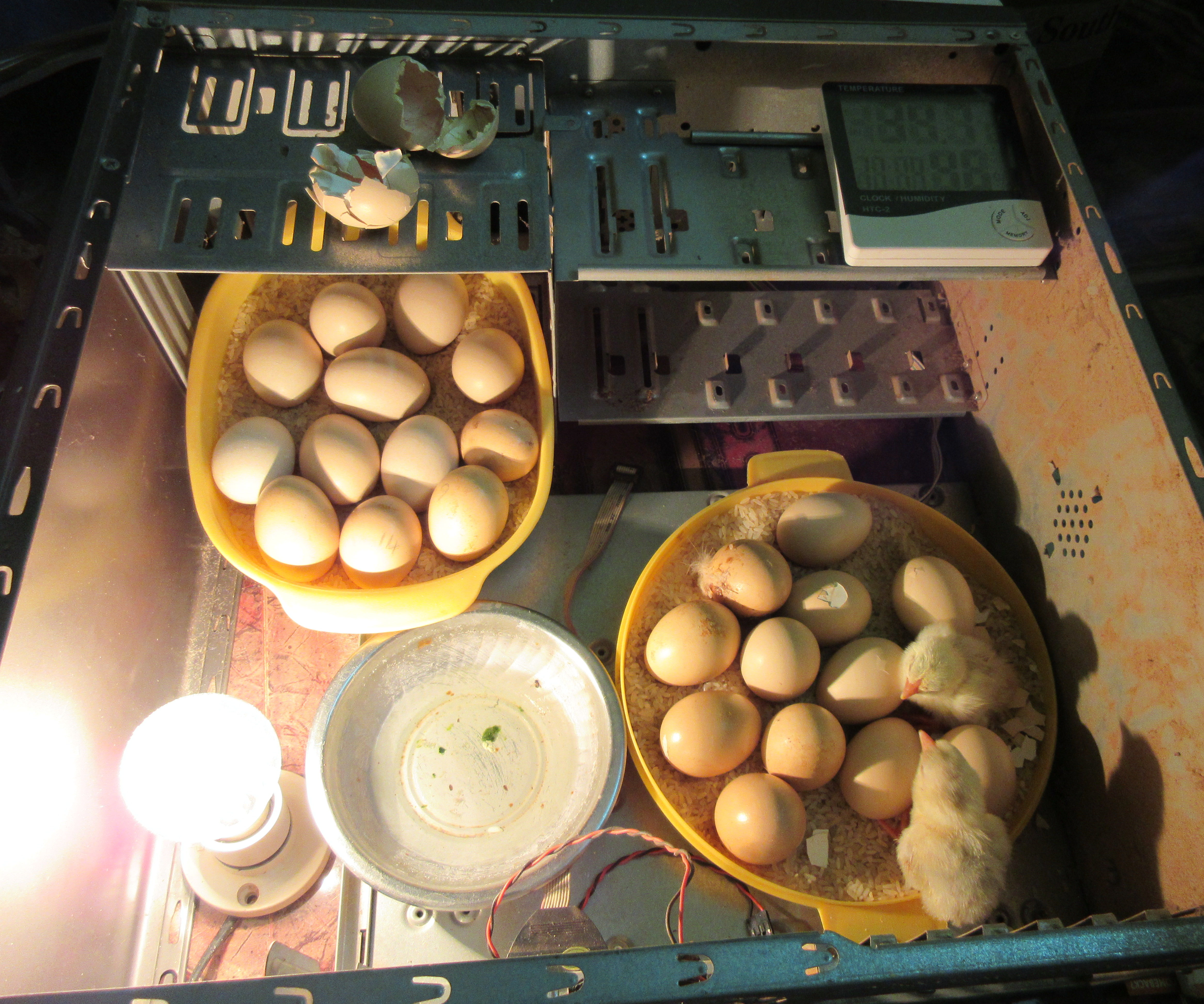 Home-made Incubator From Reclaimed Desktop Computer Case