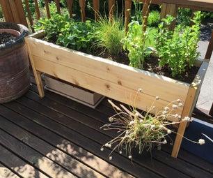 升起的植物床
