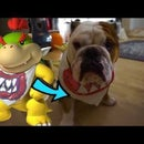 How to Make DIY Bowser Jr. Scarf