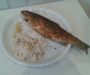 Trout (Forelle) Müllerin Art