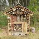 How to make a 5* bug hotel