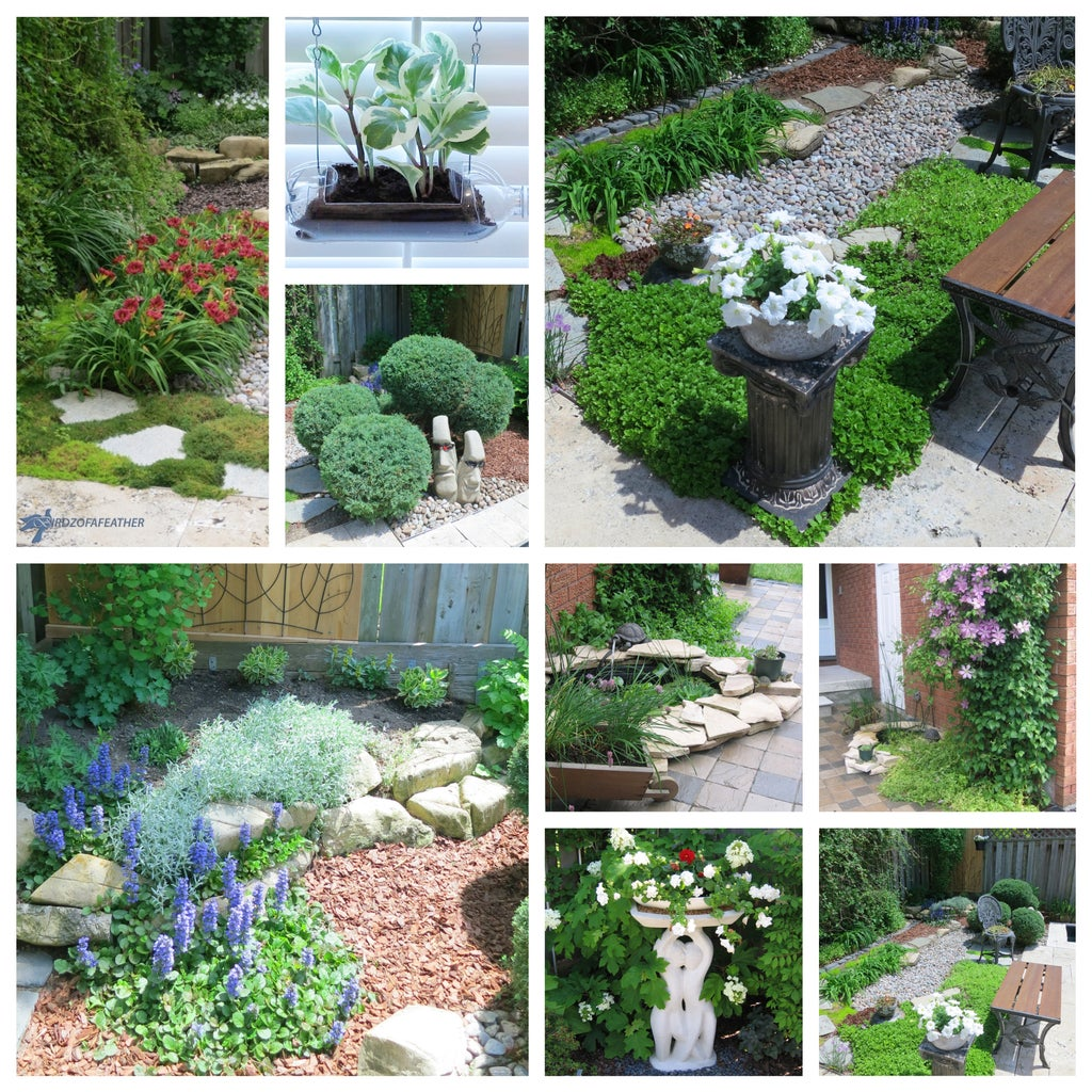 Please Vote & Check Out Our Other Garden Ideas
