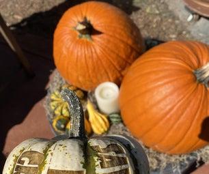 Laser Engraved Pumpkins